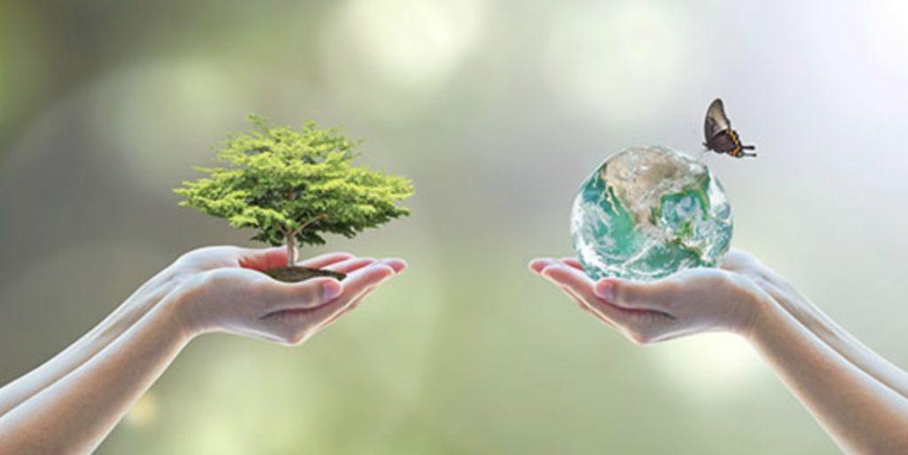 あなたの人生を変えるには環境を変えるべき 国内転売 中国輸入